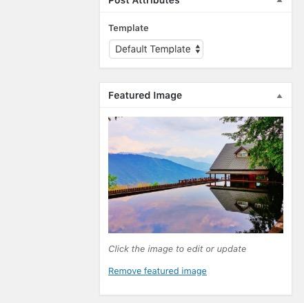 WP Featured image set